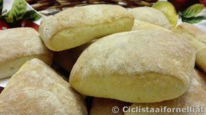 panini1